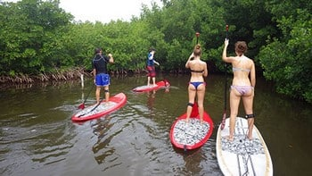 stand up paddle board guadeloupe