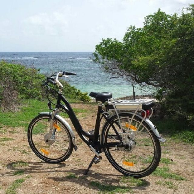 EZ Ride Electric Bike Rental