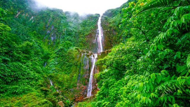 Discover Guadeloupe Through Hikes And Off Roading