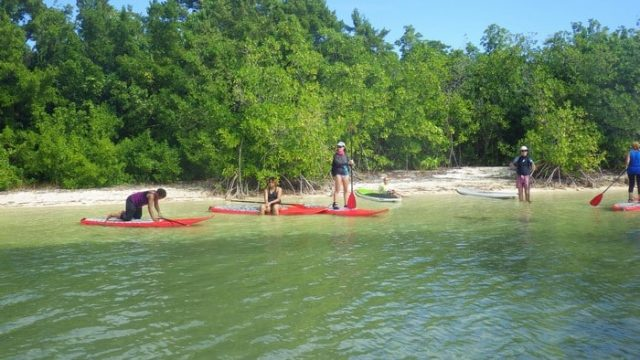 Stand Up Paddle Boarding Is The New Trend In Guadeloupe