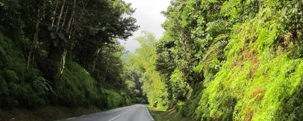 The Road Of The Traverse